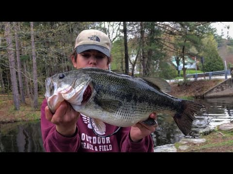 Catching Big SPAWNING Bass!! | Maine Fishing 2019