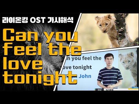 (팝송으로 배우는 영어 #10)라이온킹 OST - Can you feel the love tonight ㅣ밀가루쌤
