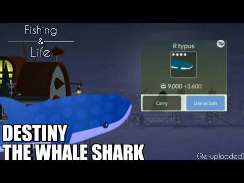 Fishing Life#1 Catch R-Typus(Whale Shark) | Edit |