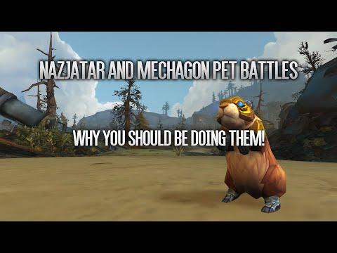 Pet Battle Guide To Nazjatar Mechagon Why You Should Do Them Youtube