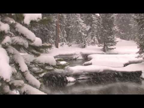 Lone Star Geyser Cross-Country Ski - Yellowstone Association Institute
