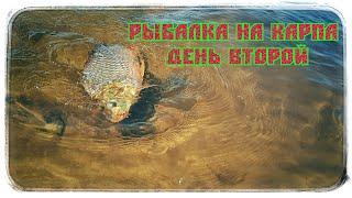 Рыбалка на карпа День Второй Часть 2