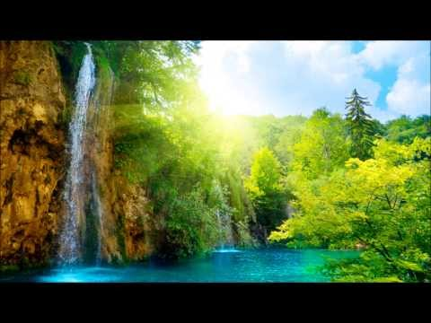 Musique Relaxante | Sommeil profond | Bruits Source | Sophrologie | Relaxation | Relax'Action