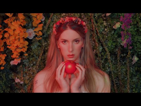Shame   ContraPoints