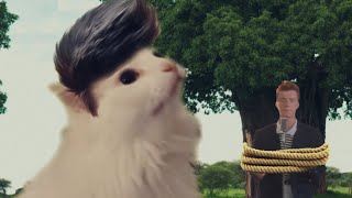 Rick Astley  Never Gonna Give You Up  Cat Cover