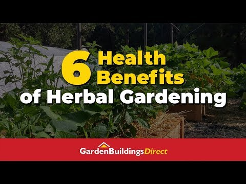 6 Health Benefits of Herbal Gardening Health Hacks Through Gardening
