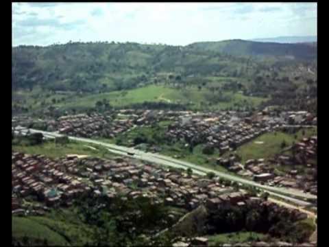 Pombos Pernambuco fonte: i.ytimg.com