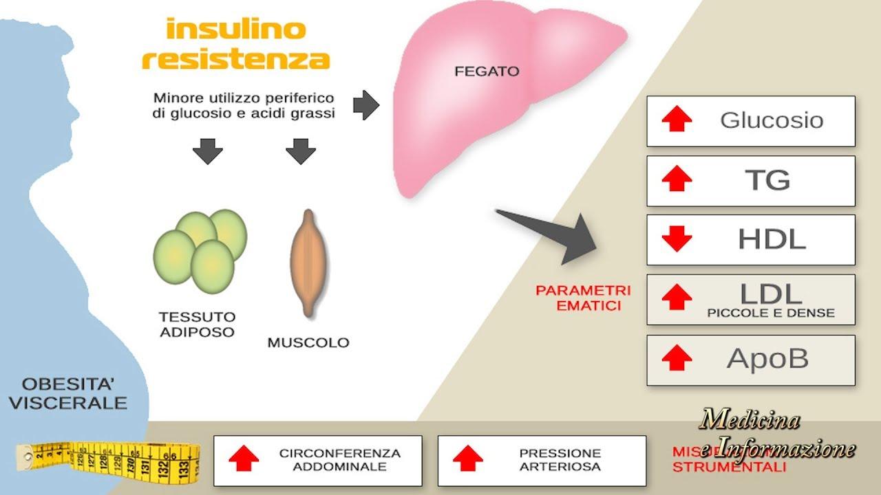 dieta insulino resistenza non perdere peso