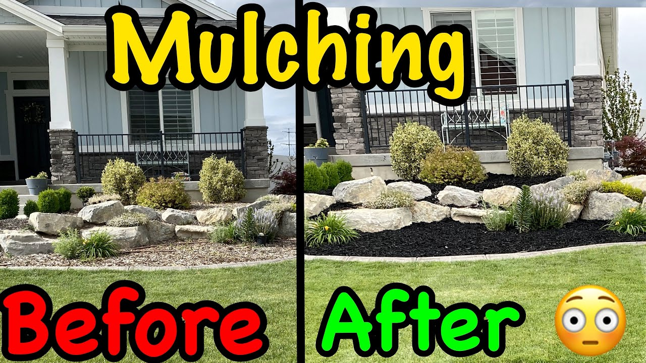 Before And After Yard Refreshing Flower Bed Mulch Youtube