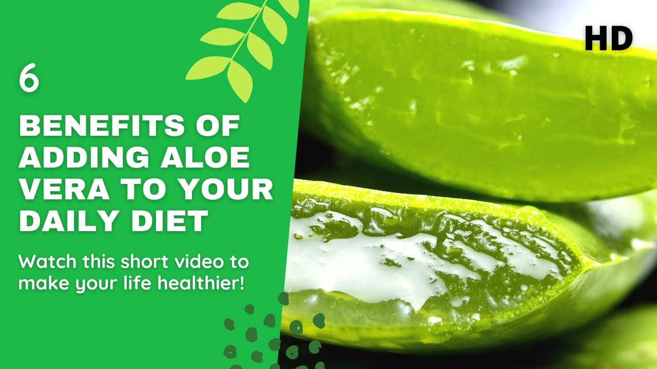 6 Benefits of Adding Aloe Vera to your Daily Diet. EVERYONE MUST KNOW THAT !