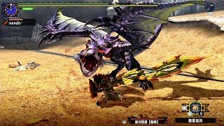 MHXX/MHGU 闘技大会 隻眼イャンガルルガ ランス ソロS 5'09  (Arena :  DLC Deadeye : lance) thumbnail