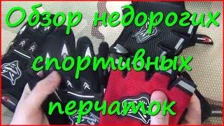Обзор спортивных перчаток(Спортивные перчатки, модели с пальцами и без пальцев. Также могут использоваться как велосипедные перчатки..., 2014-11-14T13:49:49.000Z)