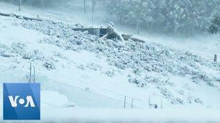 Australian Farmstead Blanketed by Snow in Polar Storm