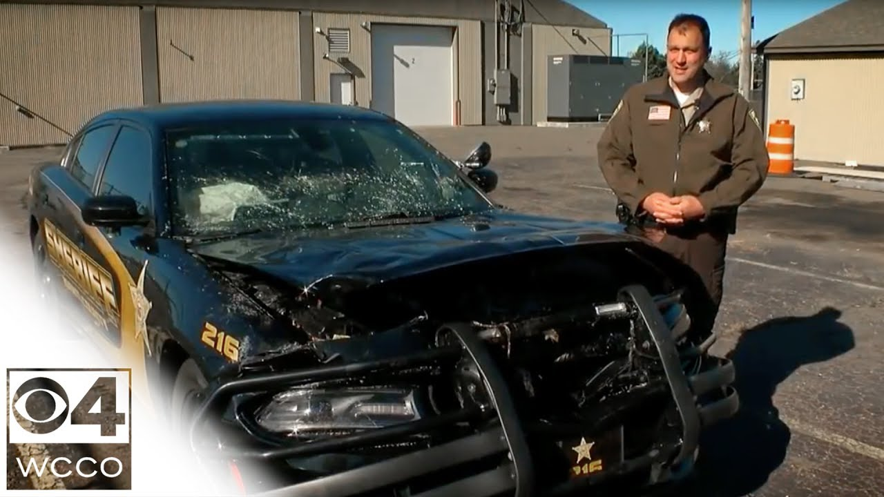 County Sheriff Hits Deer With Squad Car Youtube