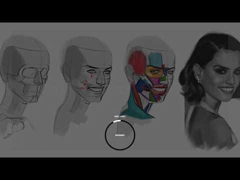 CGMA | Analytical