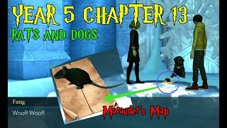 Rats And Dogs Year 5 Chapter 13 Harry Potter Hogwarts Mystery