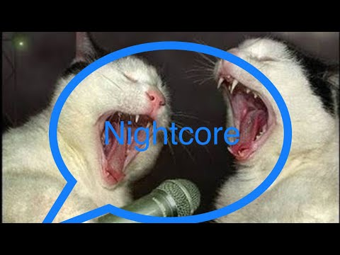 "Nightcore - ""Meow Meow"" Song by SINGING CATS 🐈 (Turn Down the volume because its really loud)"