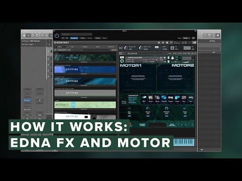 How It Works: eDNA — FX and Motor