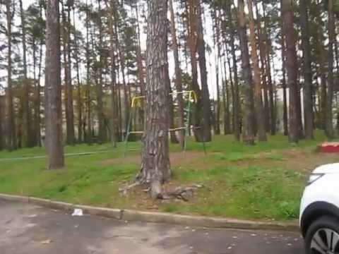 знакомство славутич киев обл интим секс с девушками 13 40 лет