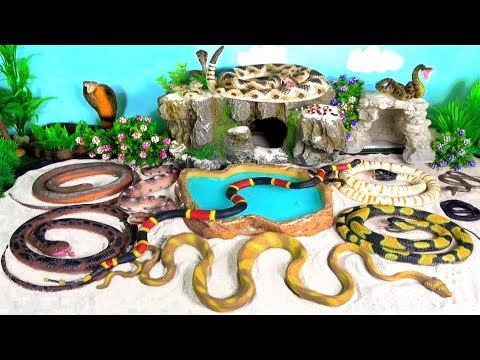 Snakes Serpent Reptile Viper Basilisk Vermin Slithery Nope Ropes 9