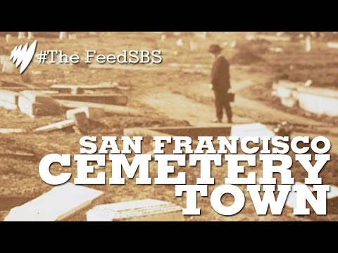 Colma: San Francisco's Cemetery Town I The Feed