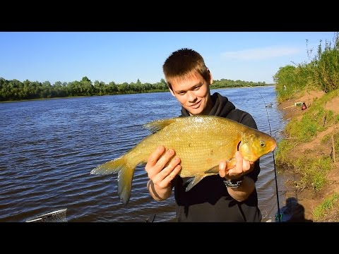 Амурская Рыбалка