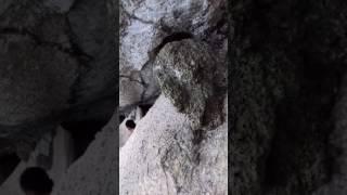 Video Bukit Batu Beras,Jelebu,Negeri Sembilan download MP3, 3GP, MP4, WEBM, AVI, FLV Juni 2018