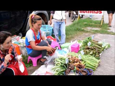 asian street food - trip to vientiane morning market , laos food