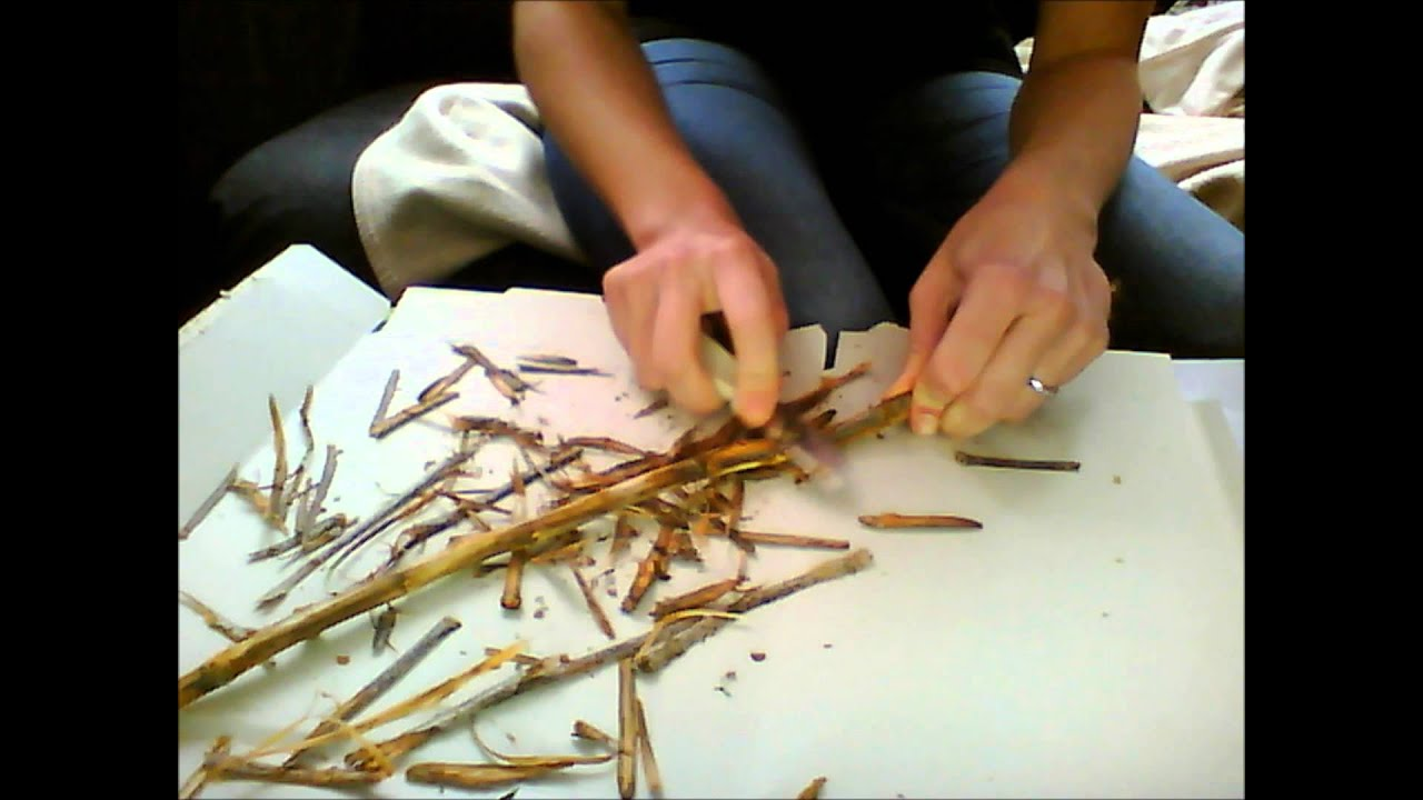DIY Wicca altar tools: how to make your own wand