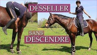 DESSELLER SANS DESCENDRE DE CHEVAL !! - Challenge 80 000