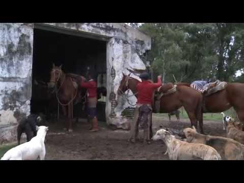 Programa Nuestro Ejército - Hombres de Campo - 16/09/14