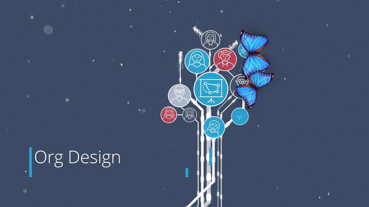 Nakisa Hanelly Org Chart, Org Design and HR Analytics