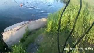 Вечерний выезд на Ошу Рыбалка кастинговой сетью рыбалка в Омской области