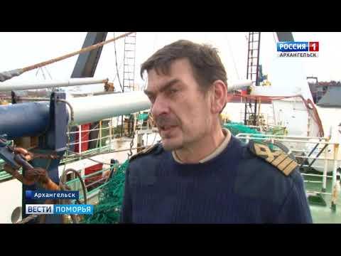 Около пятисот тонн рыбы доставили в порт «Архангельск»