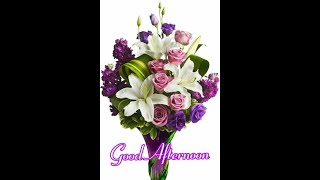good afternoon to all