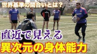 ラグビー×ドリブルデザイン 東芝ブレイブルーパス thumbnail
