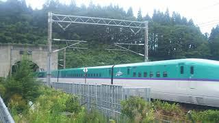 【令和初の夏休み】北海道新幹線 はやぶさ24号 東京行き H5系 2019.08.17
