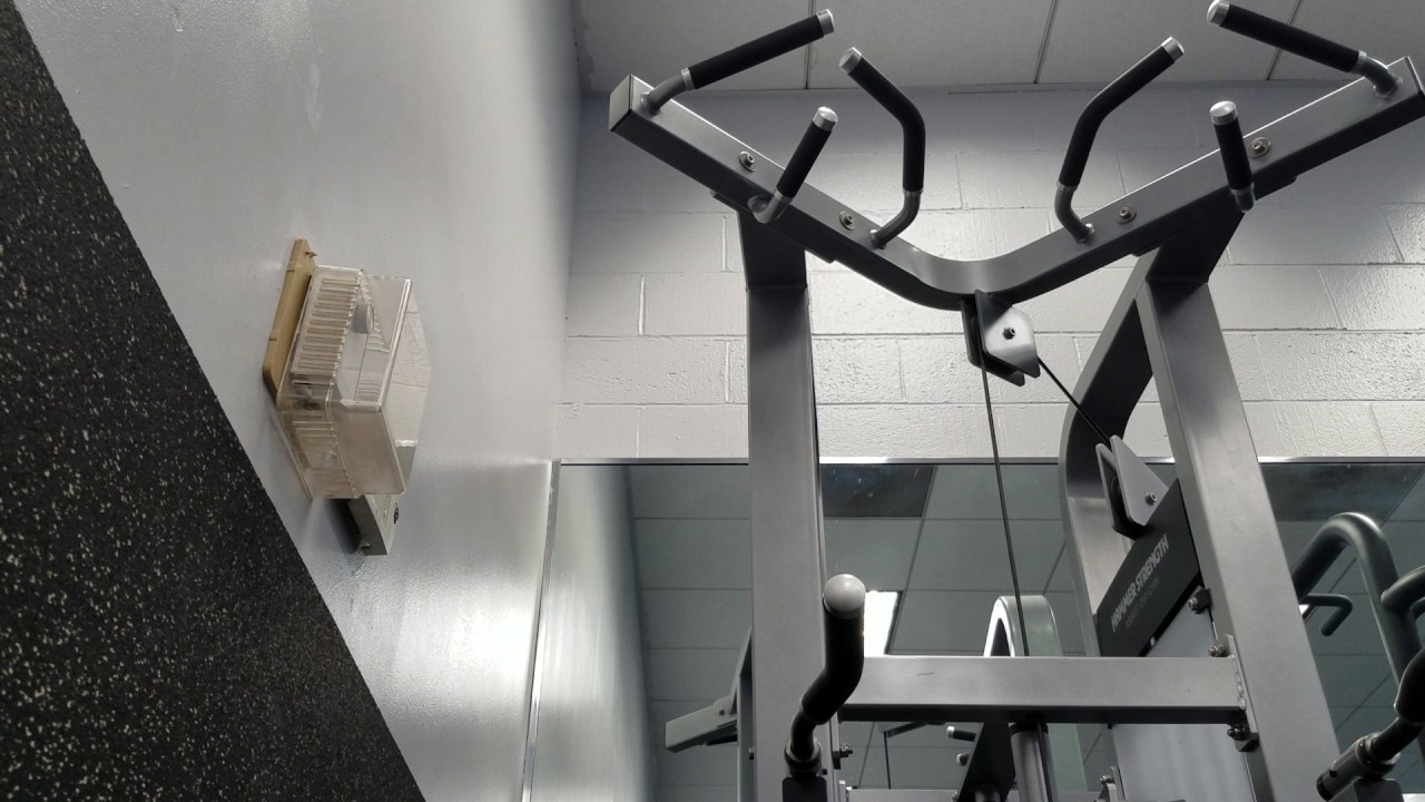 these pullups shred and