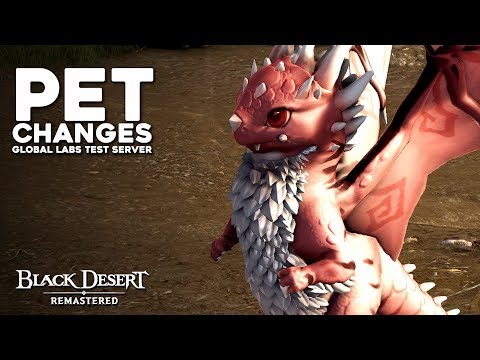Black Desert | Pets BUFFED!! No More RNG Breeding | Global Labs Test Server  (2018)