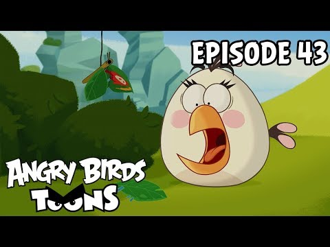 Angry Birds Toons | The Butterfly Effect - S1 Ep43