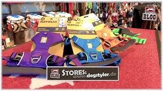 Mega Geschirr: Ruffwear Front Range Harness- Test Vor- und Nachteile// DOGSTYLER® Produktblogs #0026