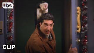 Friends: Ross Gets A Pet Monkey Named Marcel (Season 1 Clip) | TBS