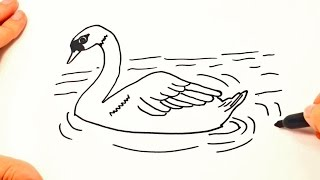 How to draw a Swan | Swan Drawing Lesson Step by Step