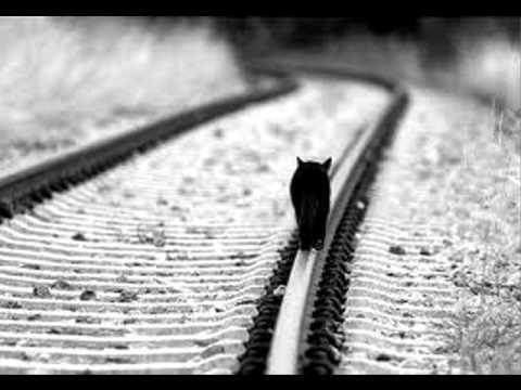 So This Is Goodbye - William Fitzsimmons (lyrics)