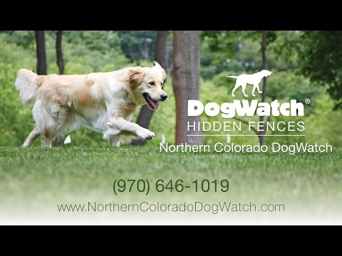 Northern Colorado DogWatch® - Enjoy the Freedom of our