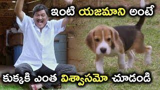 ఇంటి యజమాని అంటే కుక్కకి ఎంత విశ్వాసమో చూడండి  - Latest Telugu Movie Scenes - Rajendra Prasad