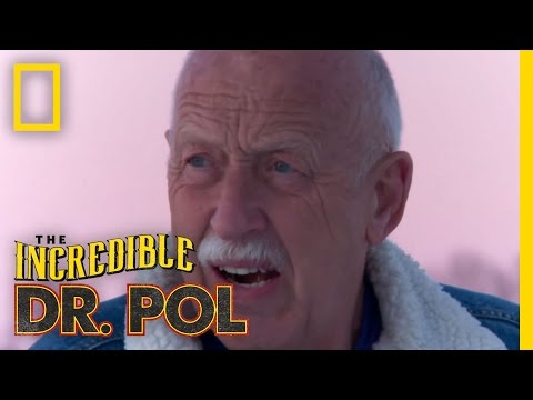 Polments: Charles Gets Stuck  The Incredible Dr. Pol