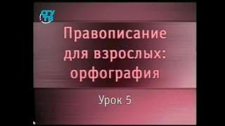 Русский язык. Урок 5. Правописание