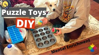 Brain Games for Dogs - DIY Puzzle Toys