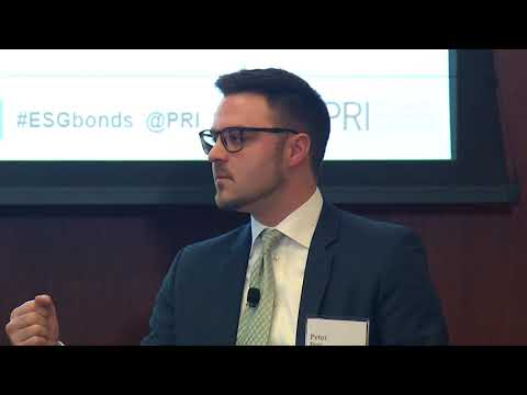ESG engagement for fixed income investors – managing risks, enhancing returns
